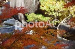 秋の昇仙峡